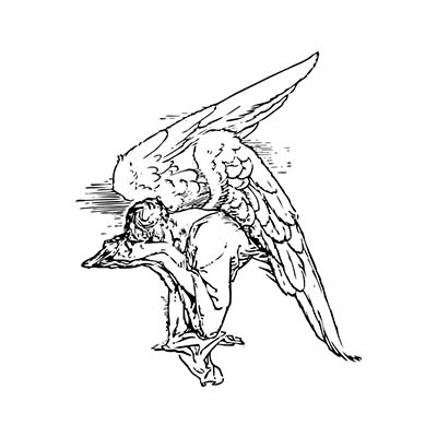 Angel Devil Wings Design Water Transfer Temporary Tattoo(fake Tattoo) Stickers NO.10864