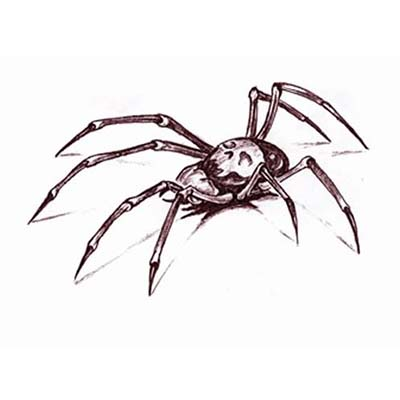 New spider Design Water Transfer Temporary Tattoo(fake Tattoo) Stickers NO.10938