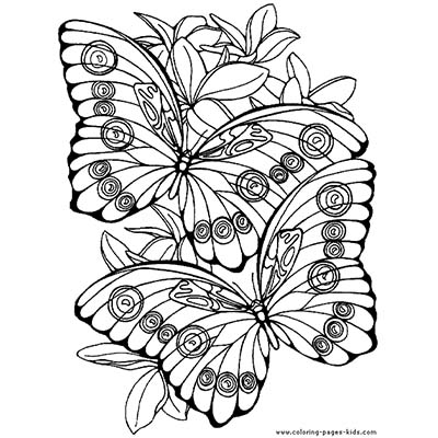 Nice Colour Butterfly Design Water Transfer Temporary Tattoo(fake Tattoo) Stickers NO.11074