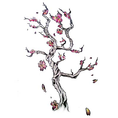 Cherry Blossom With Fan Design Water Transfer Temporary Tattoo(fake Tattoo) Stickers NO.11088