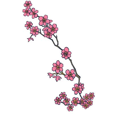 Single Cherry Blossom Branch Design Water Transfer Temporary Tattoo(fake Tattoo) Stickers NO.11093