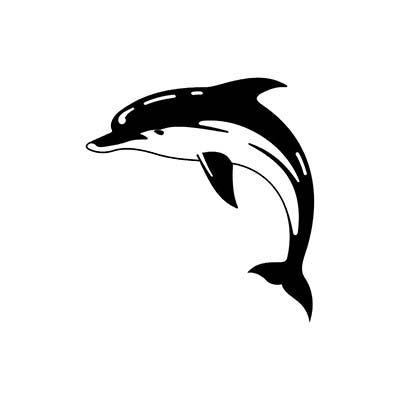 Dolphin Gallery Design Water Transfer Temporary Tattoo(fake Tattoo) Stickers NO.11125