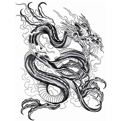 Chinese Dragon Designs Water Transfer Temporary Tattoo(fake Tattoo) Stickers NO.11139