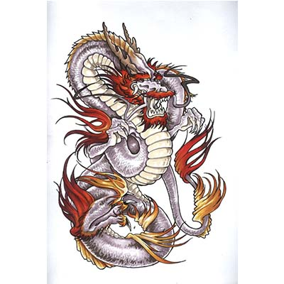 Colored Dragon On White Background Design Water Transfer Temporary Tattoo(fake Tattoo) Stickers NO.11140
