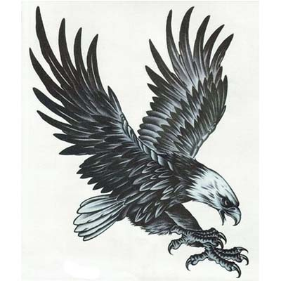 Eagle Design Water Transfer Temporary Tattoo(fake Tattoo) Stickers NO.11177