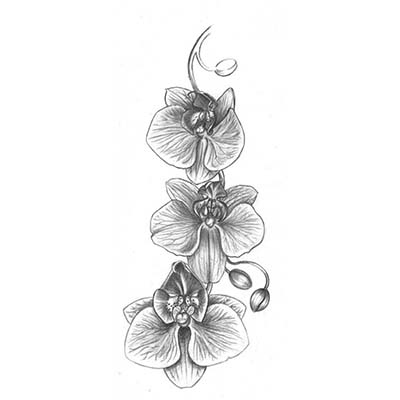 Grey Flowers Design Water Transfer Temporary Tattoo(fake Tattoo) Stickers NO.11213