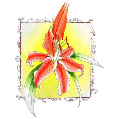 Lily Flower Design Water Transfer Temporary Tattoo(fake Tattoo) Stickers NO.11218