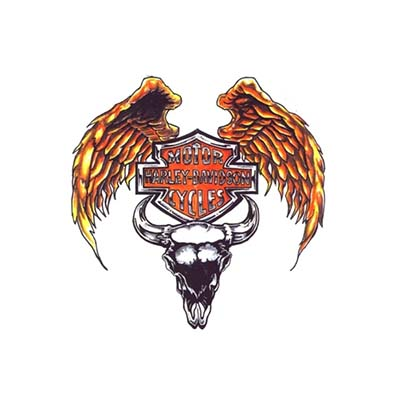 Harley davidson logo with golden wings and bull skull Design Water Transfer Temporary Tattoo(fake Tattoo) Stickers NO.11262