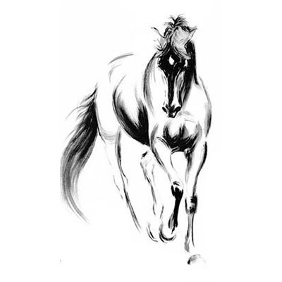 Horse Design Water Transfer Temporary Tattoo(fake Tattoo) Stickers NO.11316