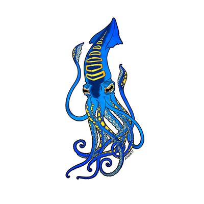 Blue squid Design Water Transfer Temporary Tattoo(fake Tattoo) Stickers NO.11377