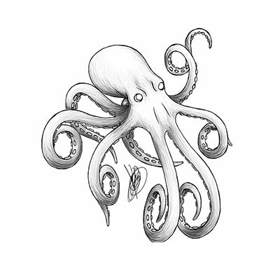 Grey octopus design Water Transfer Temporary Tattoo(fake Tattoo) Stickers NO.11379