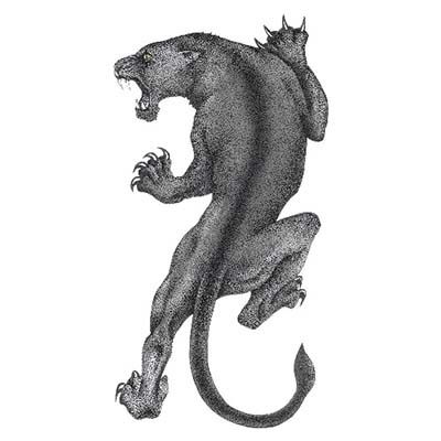 Grey Ink Angry Panther Design Water Transfer Temporary Tattoo(fake Tattoo) Stickers NO.11408