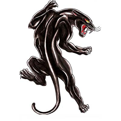 Old school black panther Design Water Transfer Temporary Tattoo(fake Tattoo) Stickers NO.11410