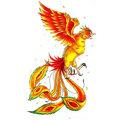 Angry Phoenix Design Water Transfer Temporary Tattoo(fake Tattoo) Stickers NO.11435