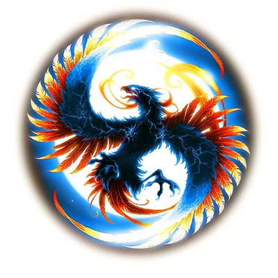 Circle Phoenix Design Water Transfer Temporary Tattoo(fake Tattoo) Stickers NO.11438