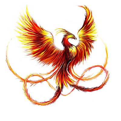 Phoenix Bird Design Water Transfer Temporary Tattoo(fake Tattoo) Stickers NO.11443