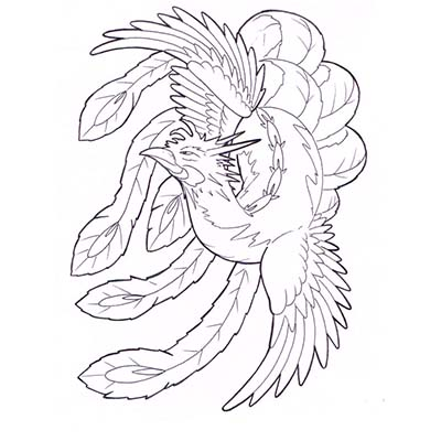 Phoenix Design Water Transfer Temporary Tattoo(fake Tattoo) Stickers NO.11449