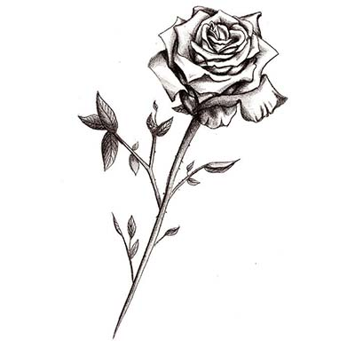 Rose Design Water Transfer Temporary Tattoo(fake Tattoo) Stickers NO.11492