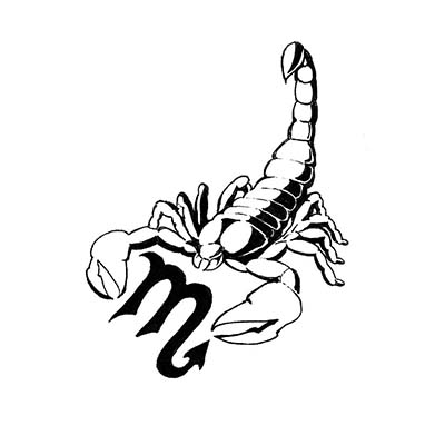 Scorpio Scorpion Design Water Transfer Temporary Tattoo(fake Tattoo) Stickers NO.11514