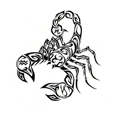 Scorpion Design Water Transfer Temporary Tattoo(fake Tattoo) Stickers NO.11509