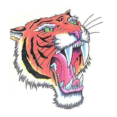 Dragon Wrap Angry Tiger Design Water Transfer Temporary