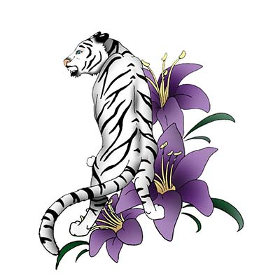Free Angry Tiger Design Water Transfer Temporary Tattoo(fake Tattoo) Stickers NO.11607