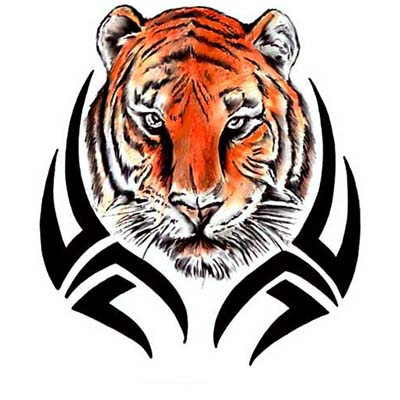 Tribal Tiger Design Water Transfer Temporary Tattoo(fake Tattoo) Stickers NO.11620