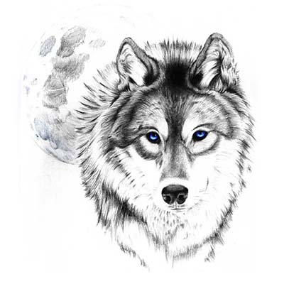Wolf Art Design Water Transfer Temporary Tattoo(fake Tattoo) Stickers NO.11729