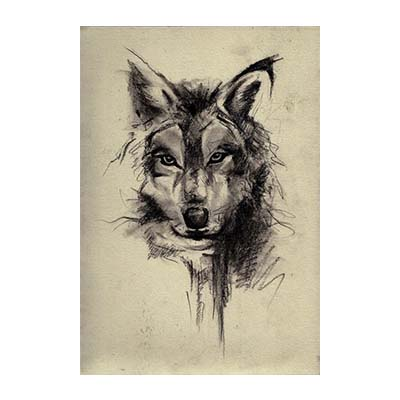 Wolf Design Water Transfer Temporary Tattoo(fake Tattoo) Stickers NO.11688