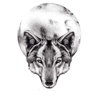 Wolf Moon Design Water Transfer Temporary Tattoo(fake Tattoo) Stickers NO.11724