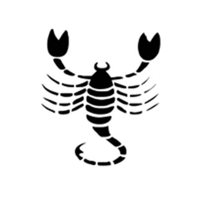 Zodiac Scorpion Design Water Transfer Temporary Tattoo(fake Tattoo) Stickers NO.11758