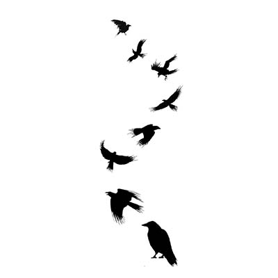 Celtic Crow Design Fake Temporary Water Transfer Tattoo Stickers NO.10216