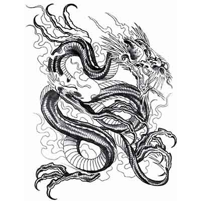 Chinese Dragon Design Fake Temporary Water Transfer Tattoo Stickers NO.10244