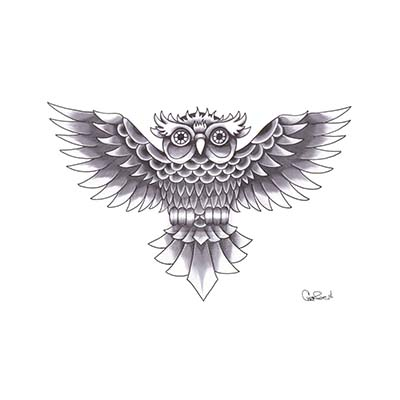 Chinese Owl Old School Design Fake Temporary Water Transfer Tattoo Stickers NO.10270