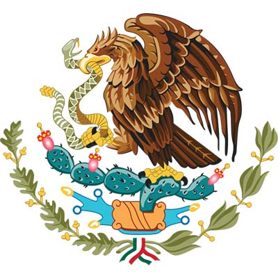 Made In Mexico Eagle Design Fake Temporary Water Transfer Tattoo Stickers NO.10445